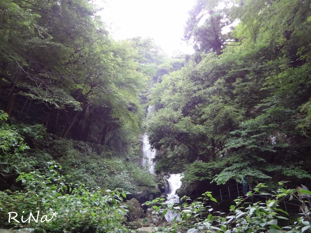 2014年8月13日 あきちゃんと養老の滝! 028